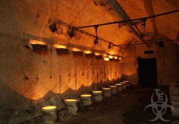 Klo Bunker